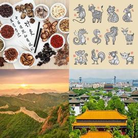 vier bilder ein wort china 2019